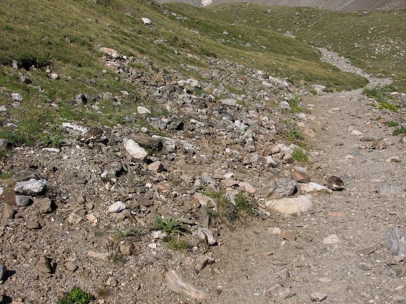 Torreys Peak 7-13-06 047.jpg