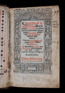 Mirroring the Reformation: 'Dashed' Religious Books