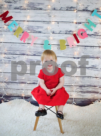 Maddie Christmas Mini