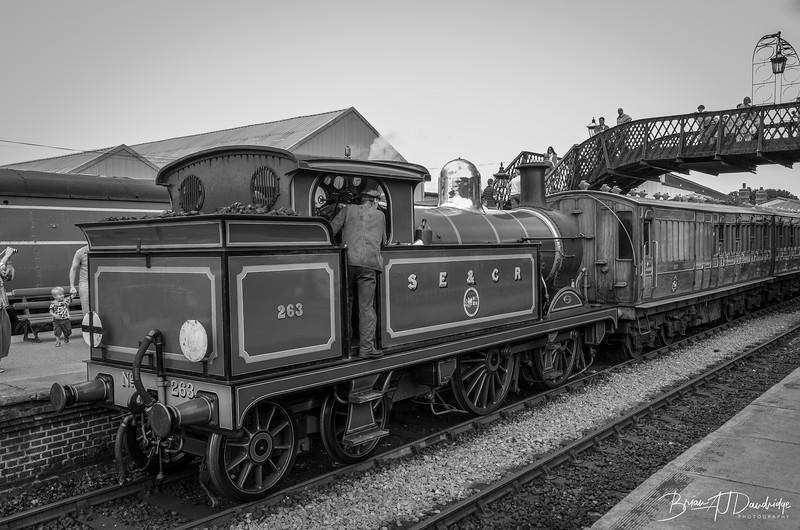 130811_Bluebell_Railway_0342.jpg
