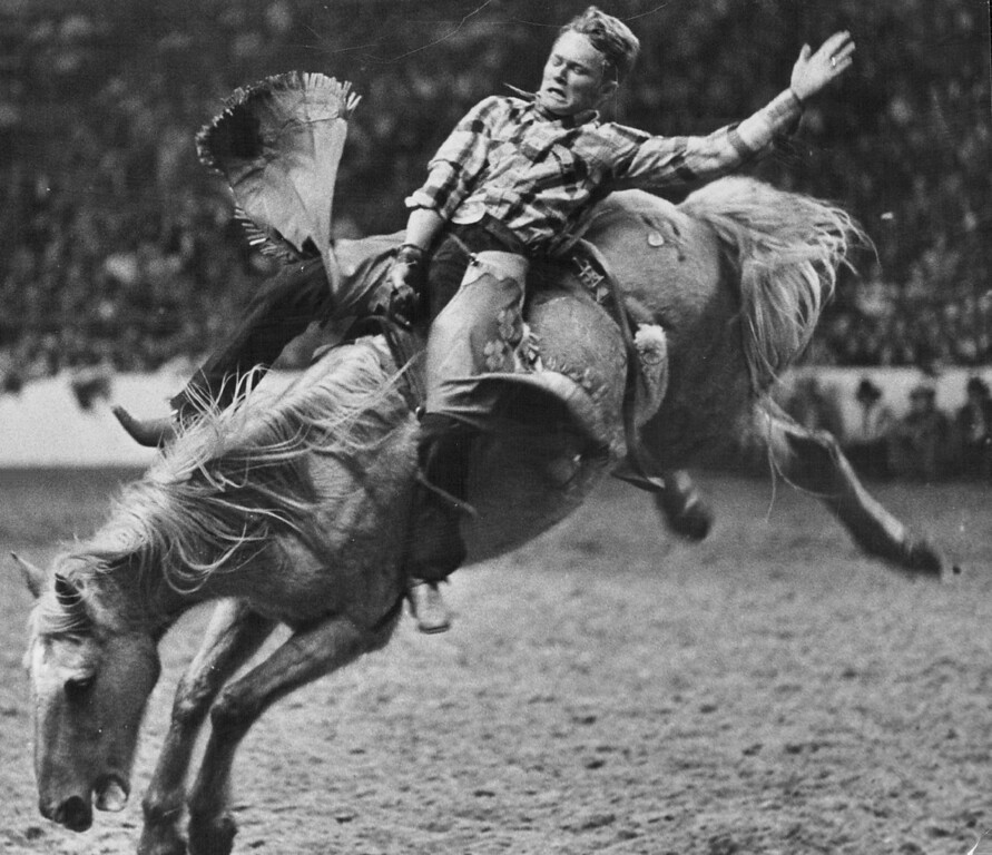 . Brian Claypool, Saskatoon, Sask., Hangs Onto His Bareback Bronc. Claypool scored a 73 aboard the horse, Moonshine, during rodeo held at the National Western Stock Show. 1974. Barry Staver, The Denver Post