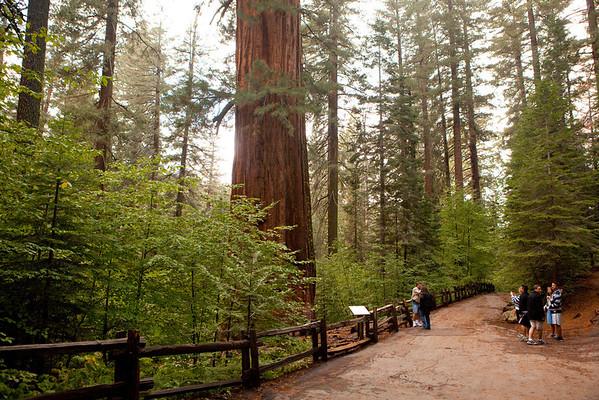 Yosemite w/ Shuli