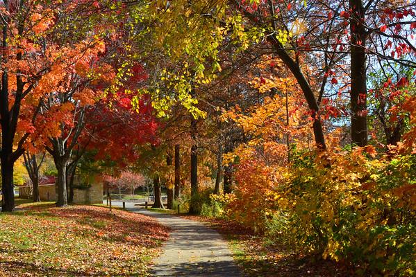 Wilde Lake & Columbia, MD Area