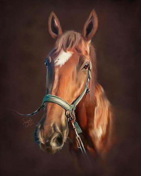 HorseSabinefinal.jpg