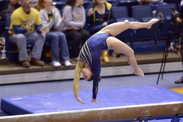 Gymnastics Portfolio