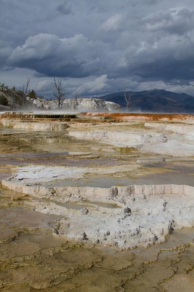 Yellowstone5 740.jpg