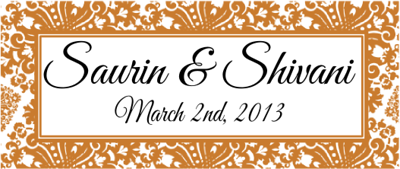 3-2-13 Wedding shivani.png