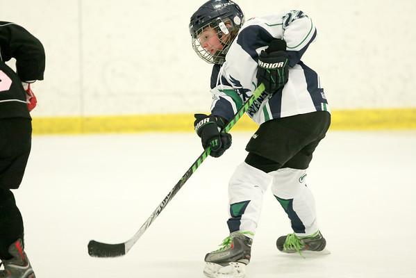 Michigan Girls Hockey League 2014