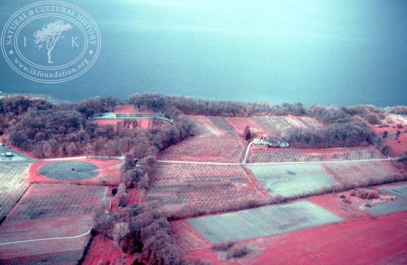 Kivik, Kungagraven. Infrared photography (1986). | LH.0129