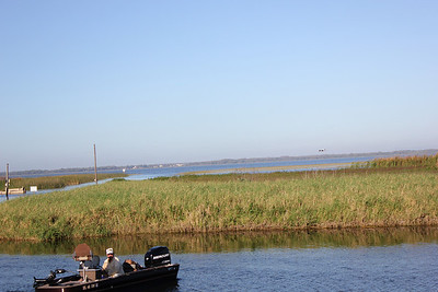 Gatorland and Airboat ride