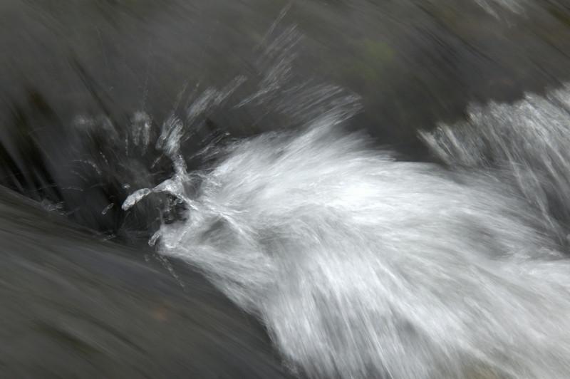 Knut foss.DSC0274.jpg