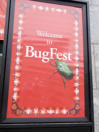 Bugfest - Sep 2013