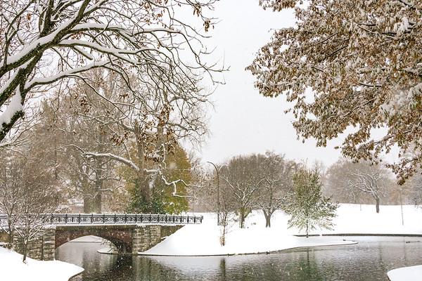 Seasons Winter