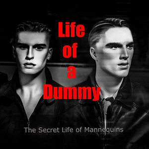 The Life of a Dummy