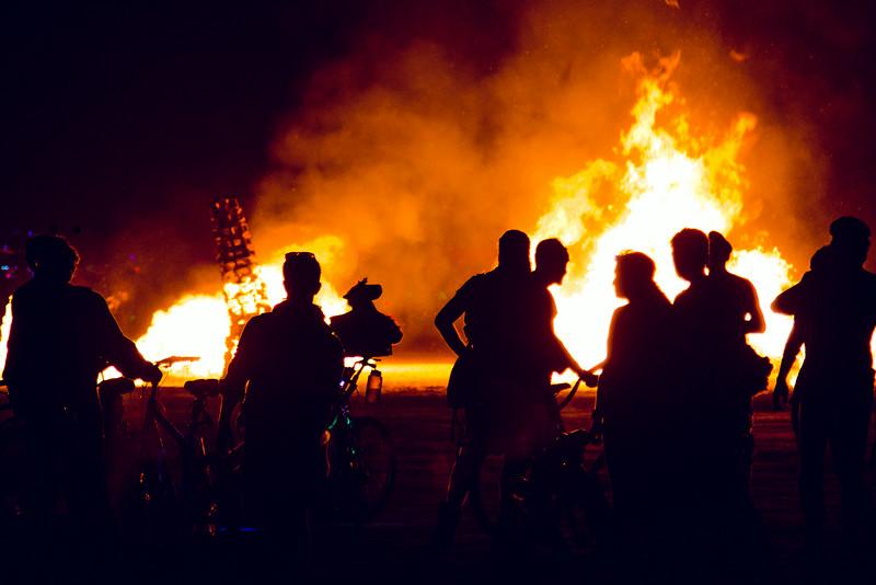 Burning Man 2014-7305.jpg