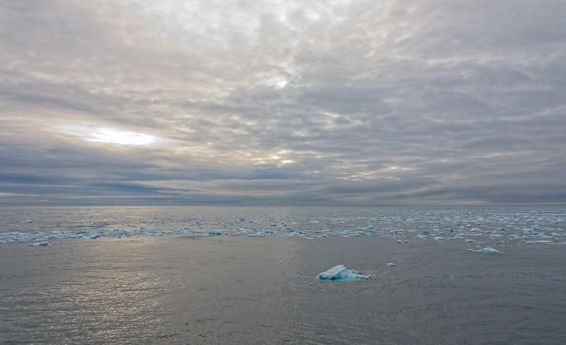polar icecap copy.jpg
