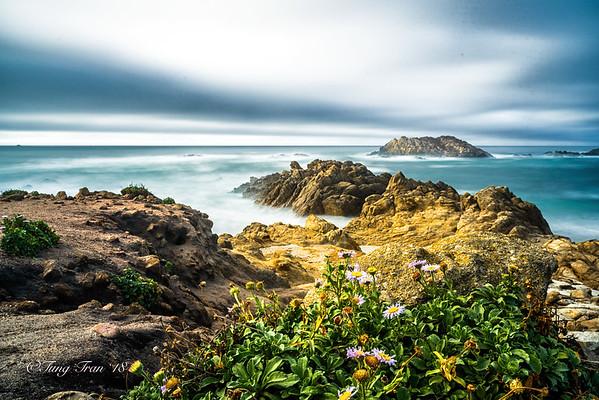 Monterey, Santa Cruz, Capitola