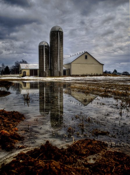 reflection - leola barn in puddle(p, 202).jpg