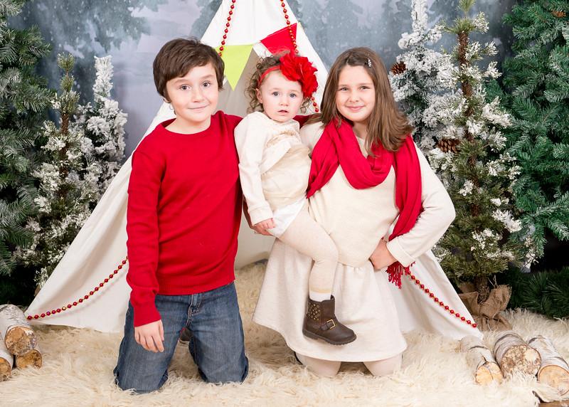 Kenney-HolidayMini2015-009.jpg