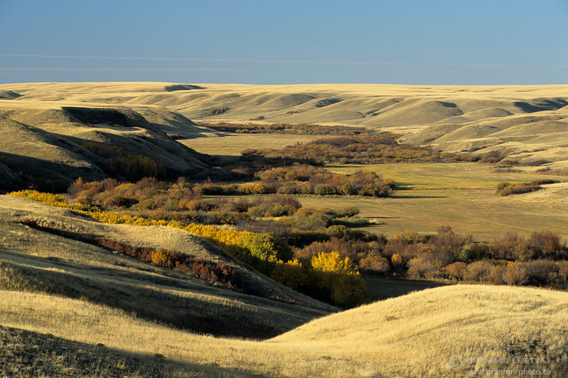 Frenchman River Valley in autumn, Cypress Hills