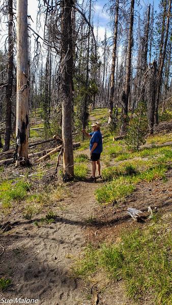 08-18-2020 Boundary Springs Hike-3.jpg