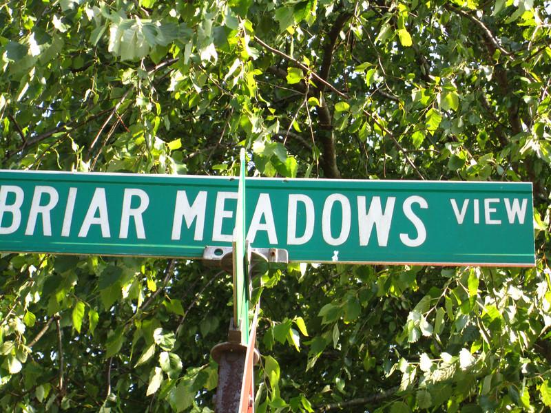 Briar Meadows Cumming GA (3).JPG