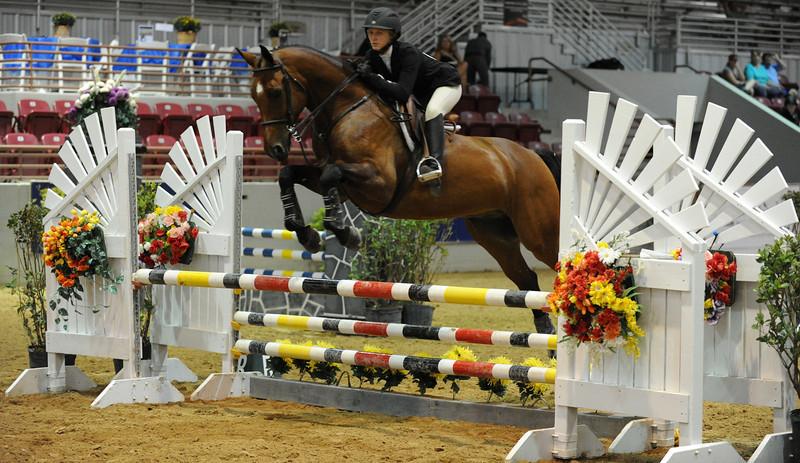 Horse show (86).jpg