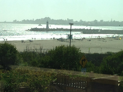 August Beach & Vows