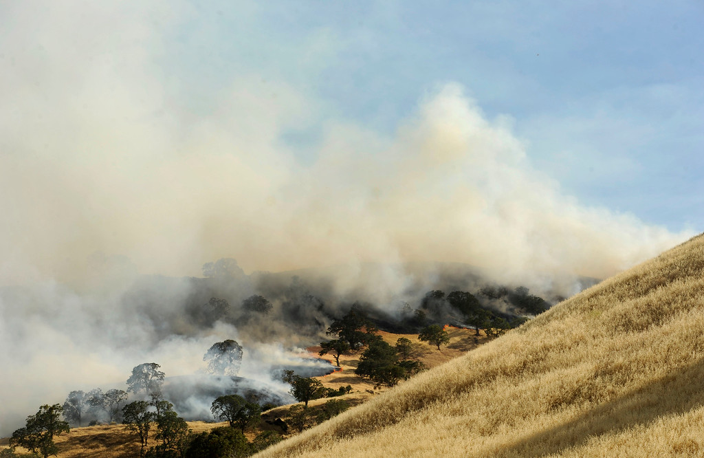 . A vegetation fire moves up a canyon near Foothill Drive, filling the blue sky with smoke in Antioch, Calif., on Wednesday, June 24, 2015. (Susan Tripp Pollard/Bay Area News Group)