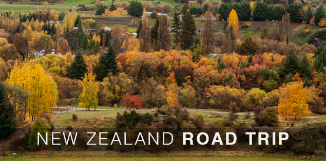 Why a self drive road trip in New Zealand is the best way to travel