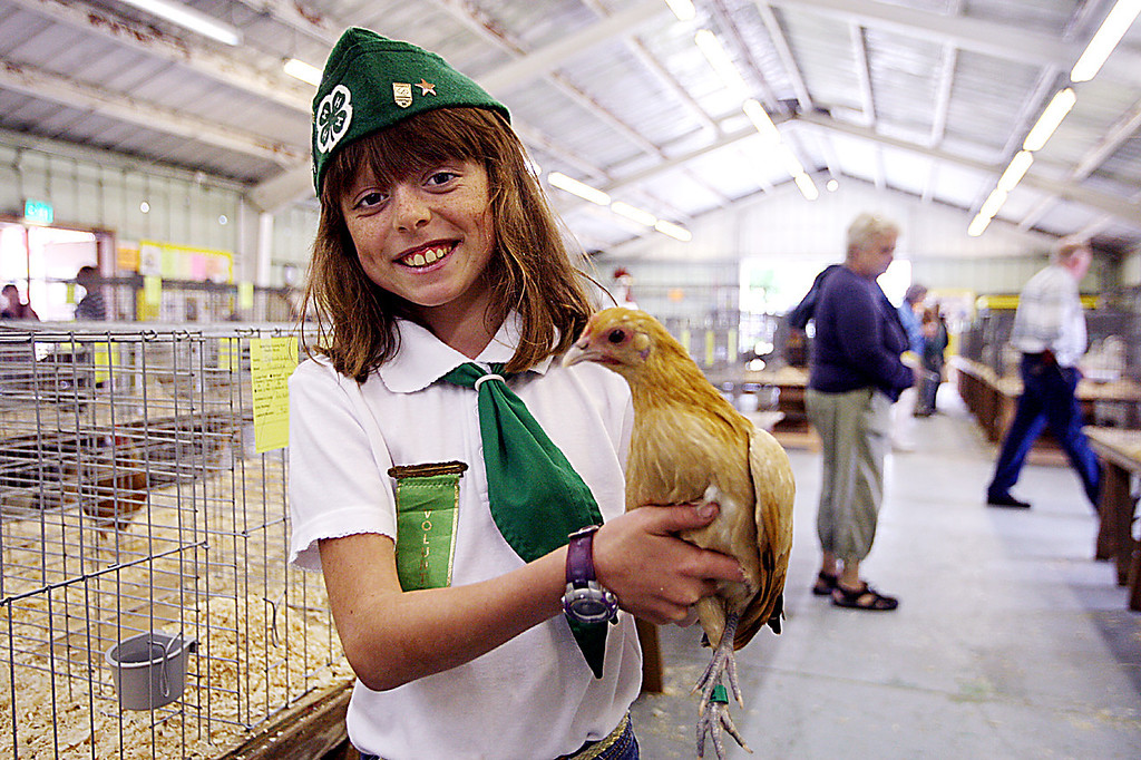 . Jordan Randolph of Corralitos 4-H, shows off one of her four chickens at the Santa Cruz County Fair Tuesday.  (Dan Coyro/Sentinel)