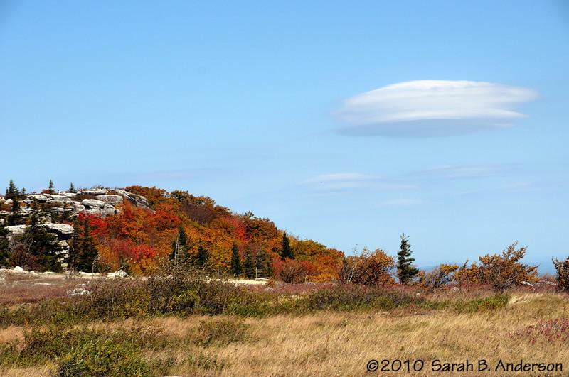 Fall Foliage @ Bear Rocks Dolly Sods Wilderness, WV  October 2010 Nikon D300, Nikon 18-200 vr