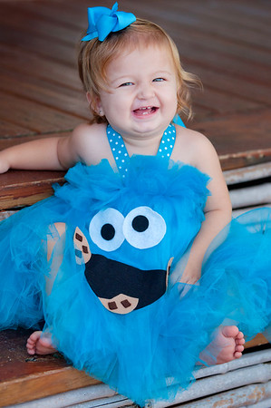 Raegan - Cookie Monster and 1st Birthday Dress