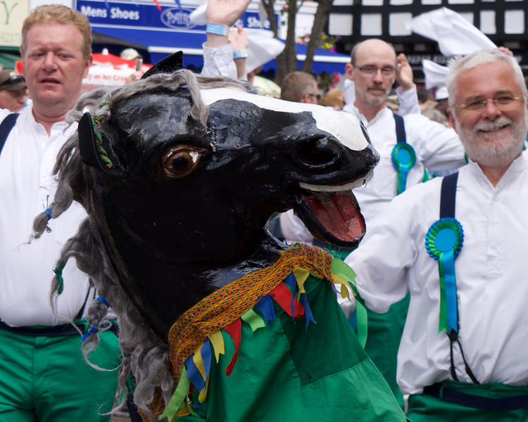 The Sheffield Horse