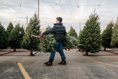 20171202 - Holiday Tree (SN)