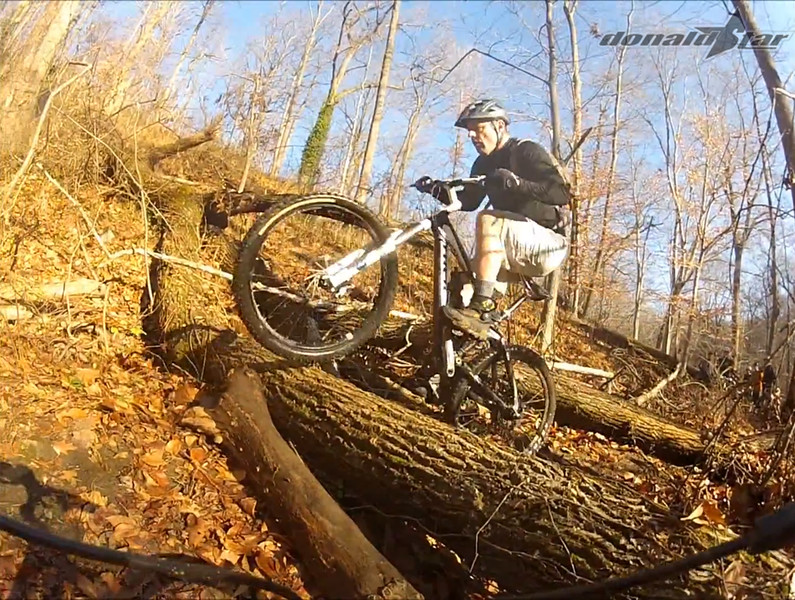 log ride 5.jpg
