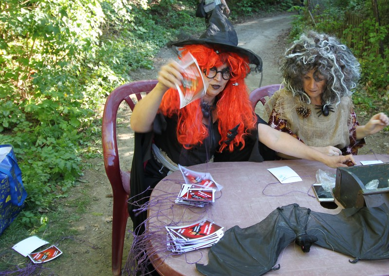 Wicked Witches' Woodland Walk