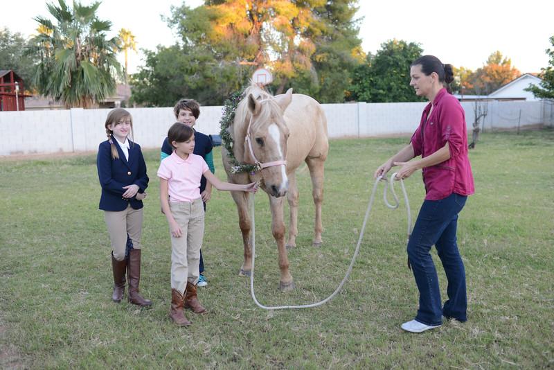 Equestrian Birthday Tea Tikkido (71 of 84).JPG