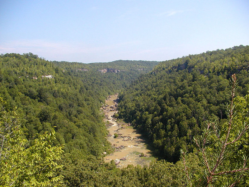 Big South Fork River viewed from Honey Creek Overlook
