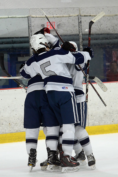 Manasquan High School Boy's Varsity Ice Hockey team celebrates a goal by Aidan Tolnai early in the game against Wall Township High School at the Jersey Shore Arena on 01/30/2019.