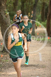 St Gregory X Country at St Matthews 2016