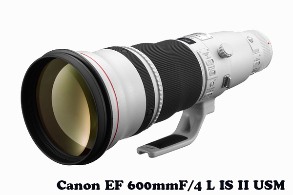 ef-600mm-f4l-is-ii-usm-d.jpg