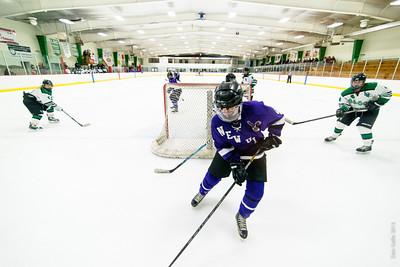 2013-12-20 LDC Girls Hockey