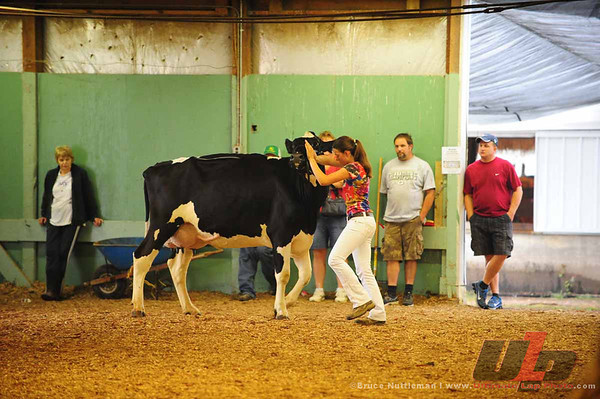 Saturday, July 21st, 2012-Open Dairy, Parish Show