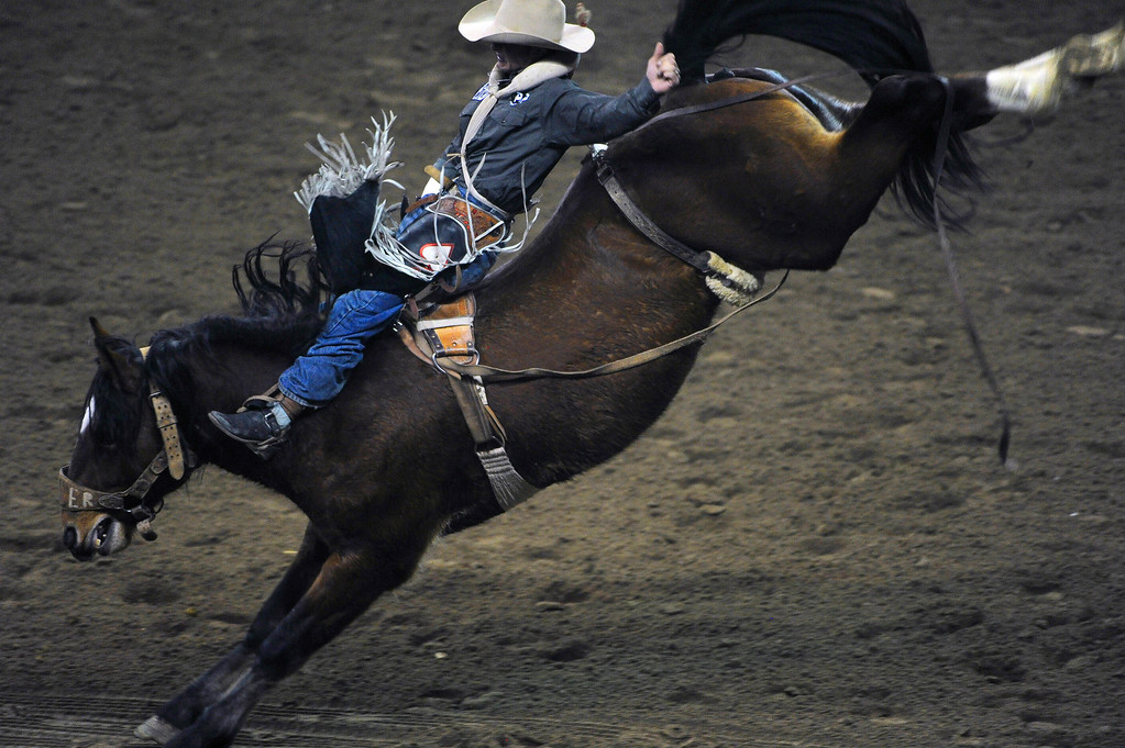 . DENVER, CO- JANUARY 27:   Will Lowe, of Canyon, Texas, hangs on during the Bareback Riding competition of the rodeo.  The final day of the 2013 National Western Stock show was Sunday, January 27th.  One of the big events for the day was the PRCA Pro Rodeo finals in the Coliseum.  The event featured bareback riding, steer wrestling, team roping, saddle bronc riding, tie down roping, barrel racing and bull riding.  (Photo By Helen H. Richardson/ The Denver Post)