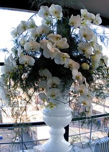 Jamie Aston Flowers