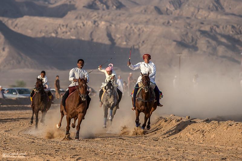 IMGL6833- Horse race.jpg