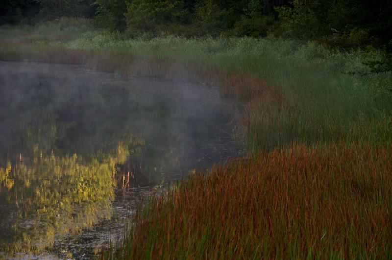 Morning Pond.jpg
