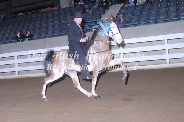CLASS 9  PARK PLEASURE AM OWNED & TRAINED SPEC
