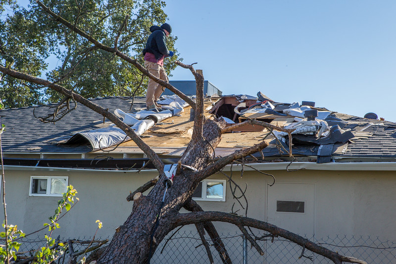 5671 Wallace Ave - Tree 1030am 12 16 2017 Extremly Windy Conditions-88.jpg